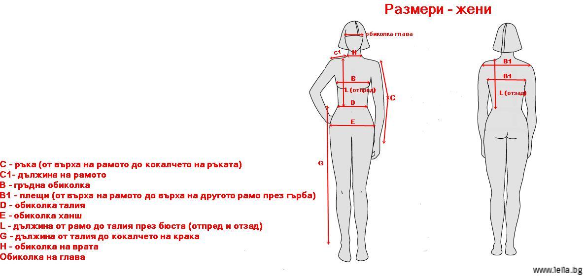 размери жени